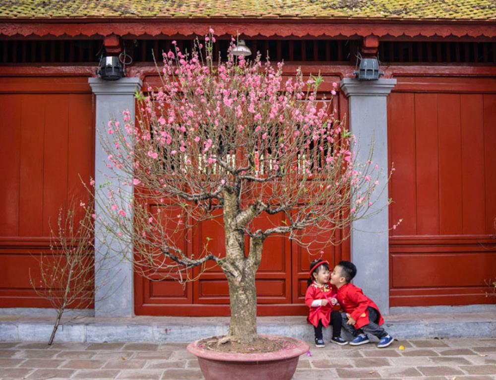 So bunt und schön ist das Neujahrsfest Tet in Hanoi