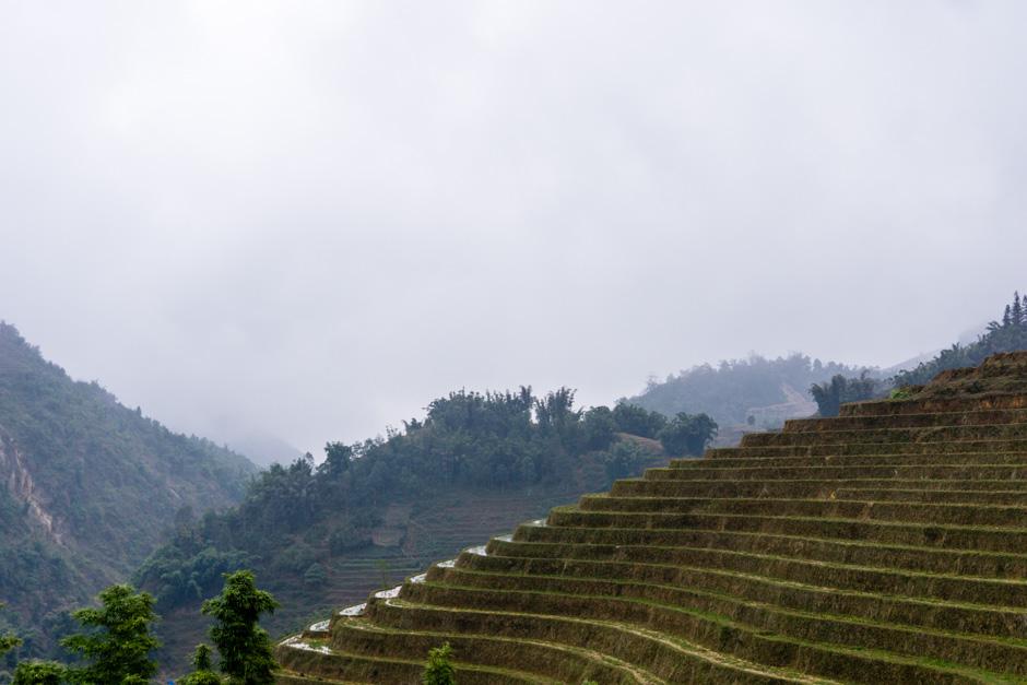 Terrassen im Profil