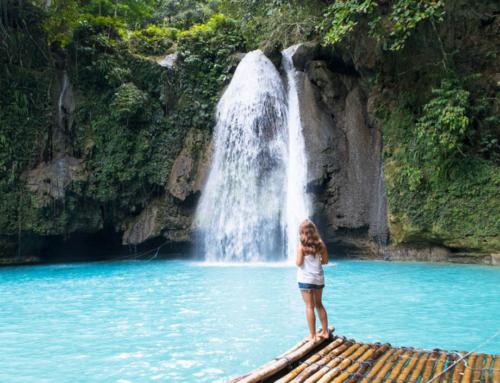 Cebu, wo man mit Schildkröten schwimmt und unter Wasserfällen duscht
