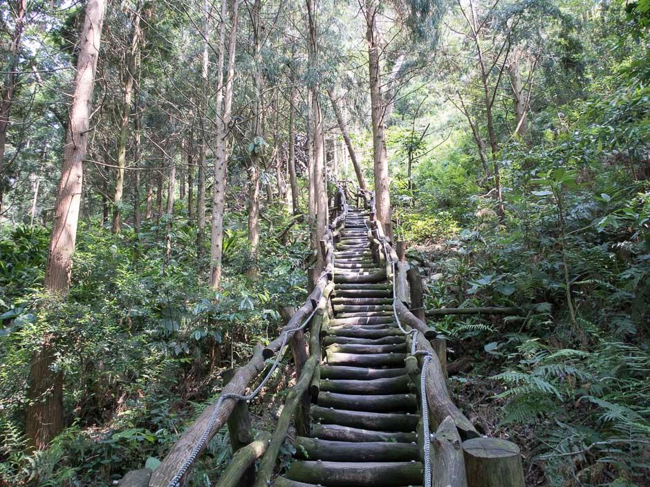 Dakent Trail No4