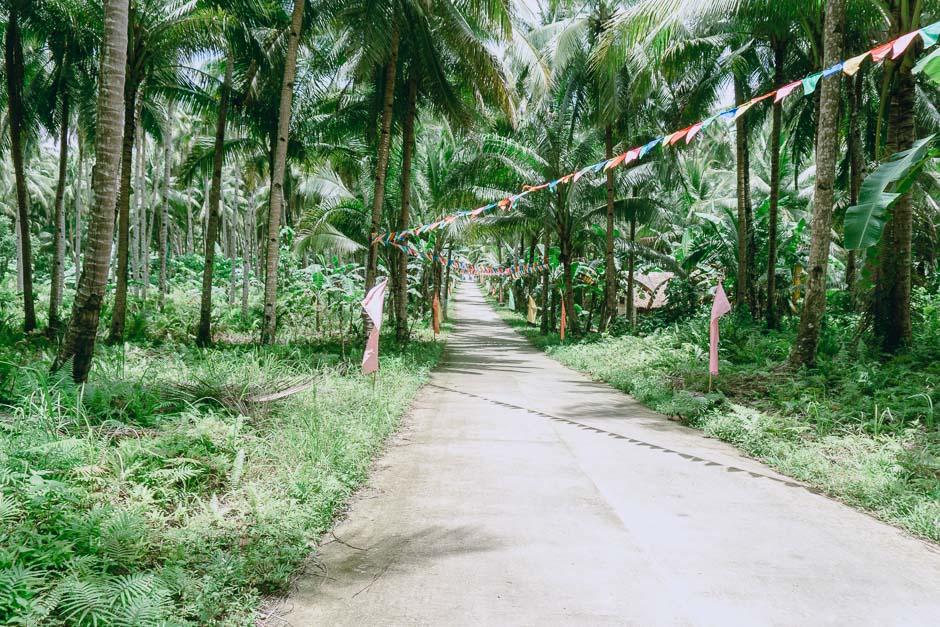 Straße auf Siagaro