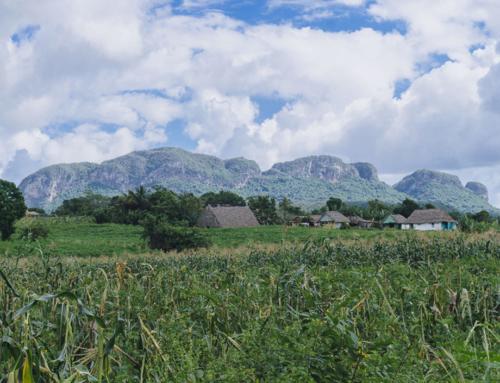 Viñales – Dorf der Glückseligkeit