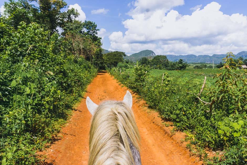 Auf dem Pferd in Vinales