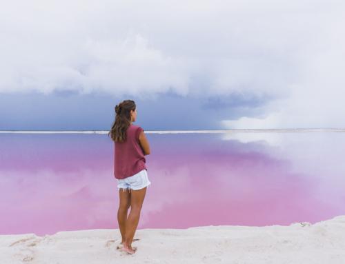 Rio Lagartos und die pinken Seen von Las Coloradas