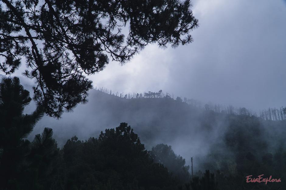 Der mystische Blick über die Landschaft