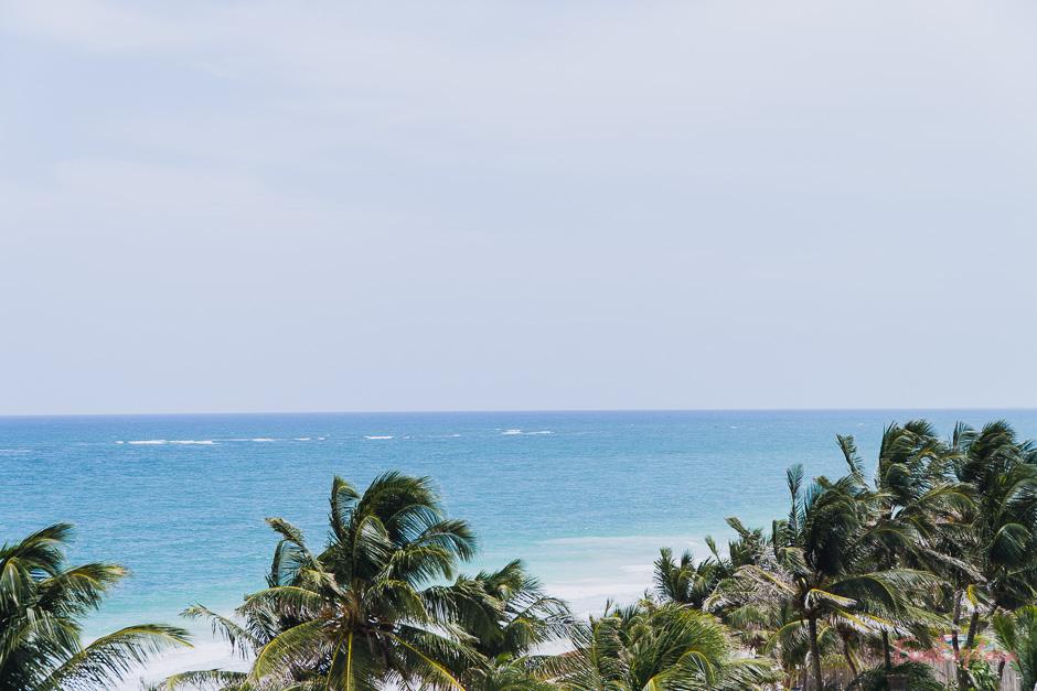 Strand und Palmen