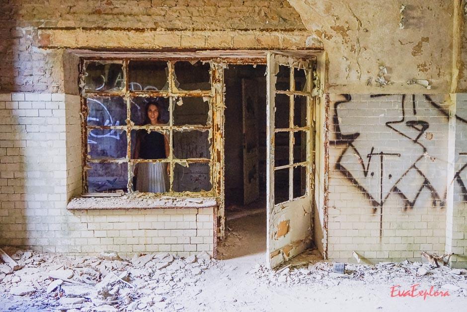 Steffi im Fenster