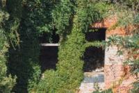 Verfall in Beelitz