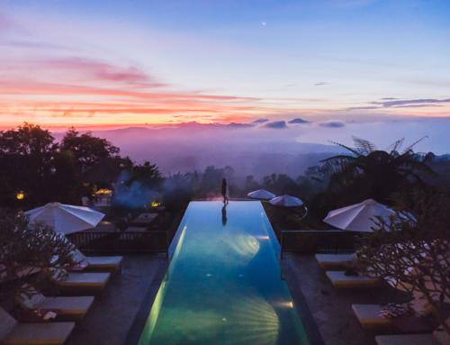 Munduk Moding Plantation – der fotogenste Pool Balis