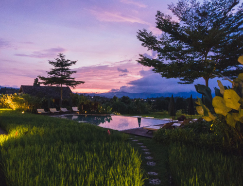 Sanak Retreat Bali – Hotelidylle zwischen Reisfeldern