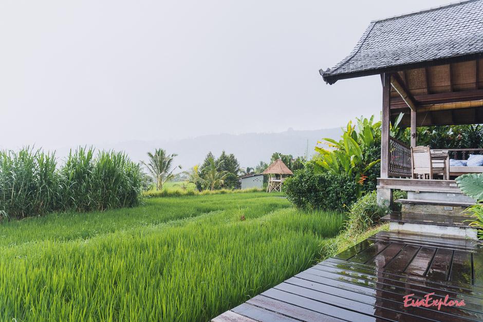 Unterkunft zwischen Reisterrassen