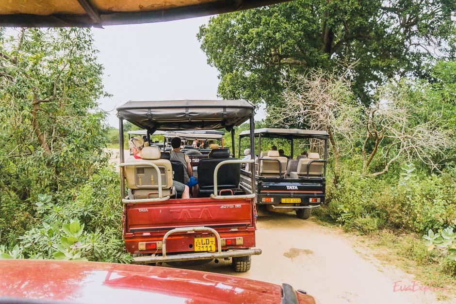Jeep Stau