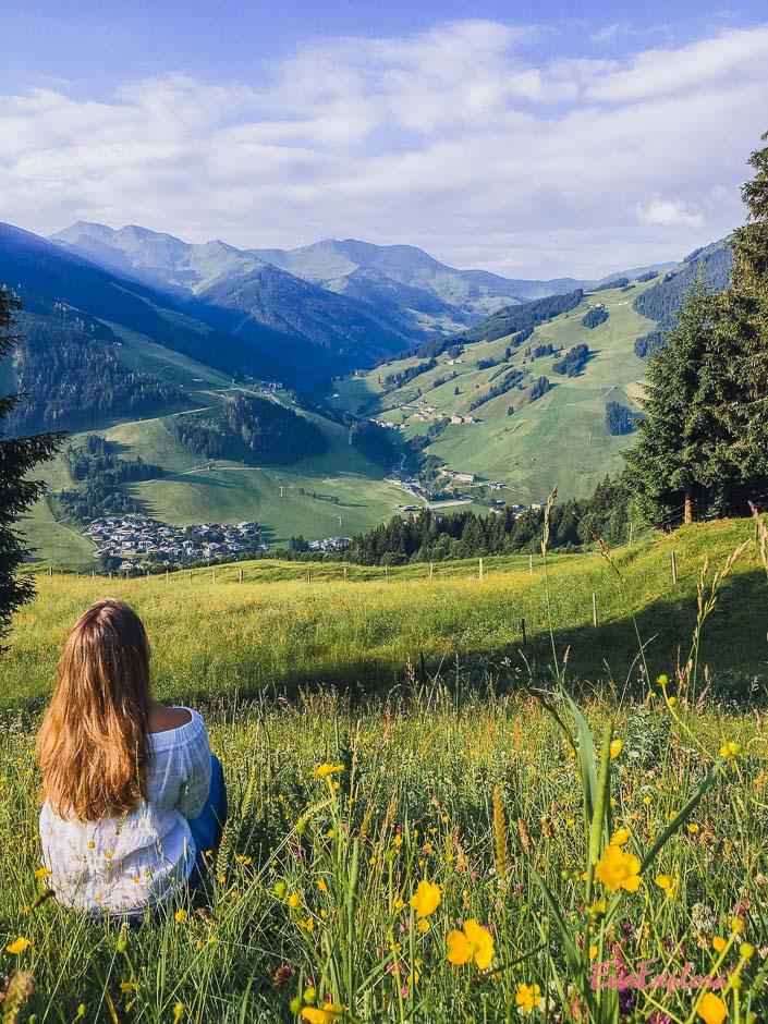 Blumenwiese und Bergpanorama
