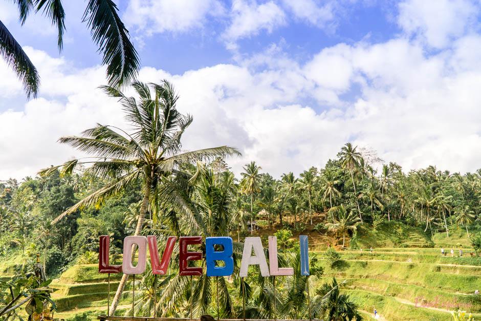Reisterrassen Tegalalang Bali
