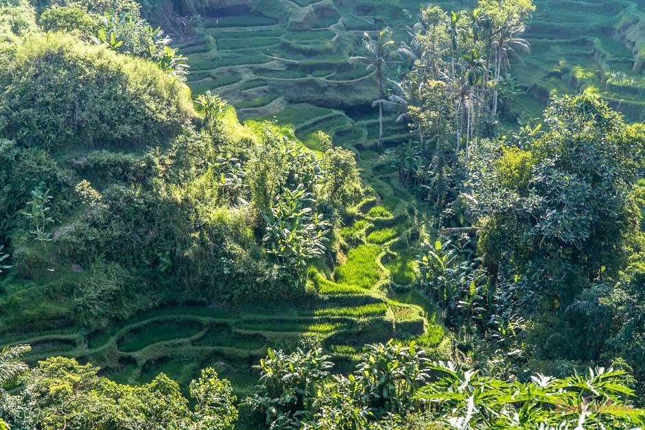 Geheimtipps Bali Rundreise