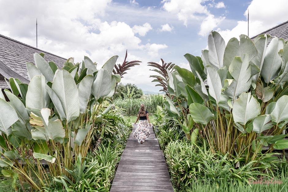 wohnen zwischen Reisfeldern auf Bali