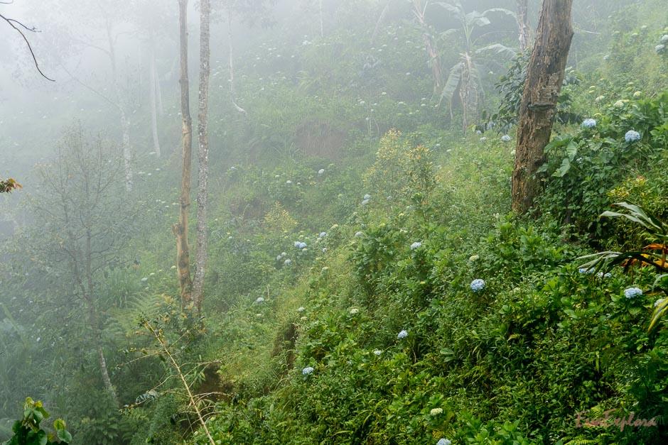 Ausfluege auf Bali