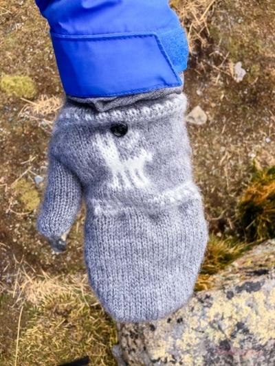 Handschuhe gegen Kaelte