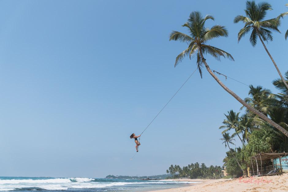 Palmenschaukel Sri Lanka