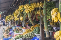 Obststand in Galle