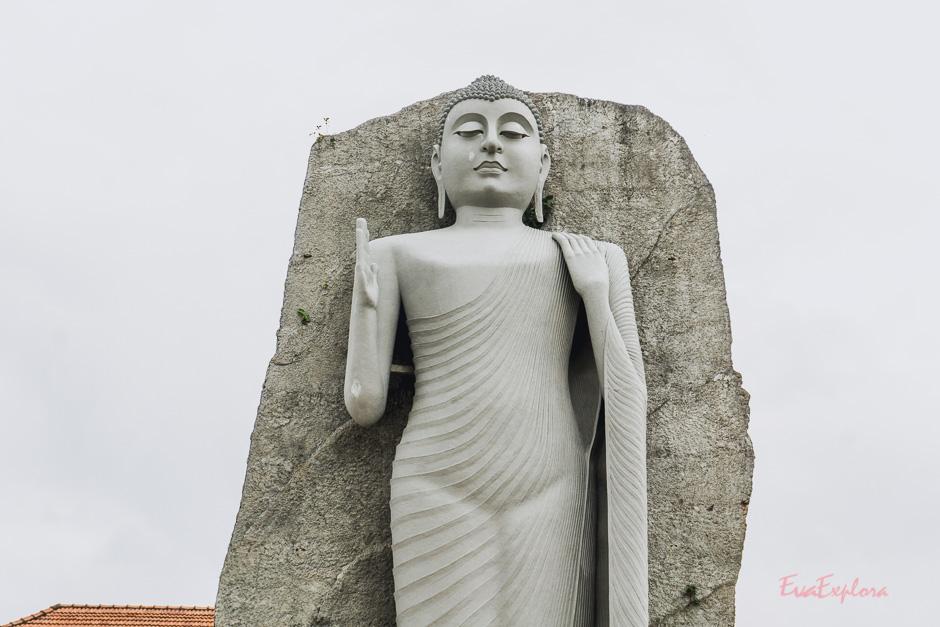 Buddha auf Sri Lanka