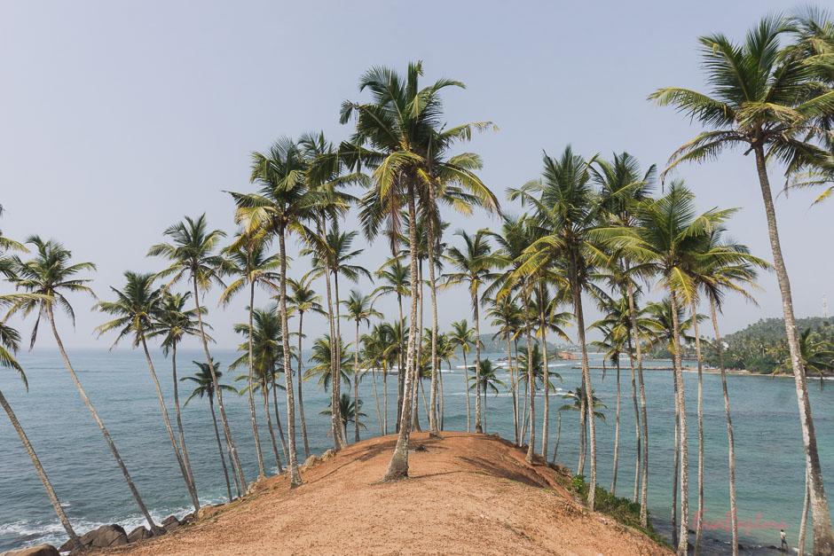 Fotospot auf Sri Lanka