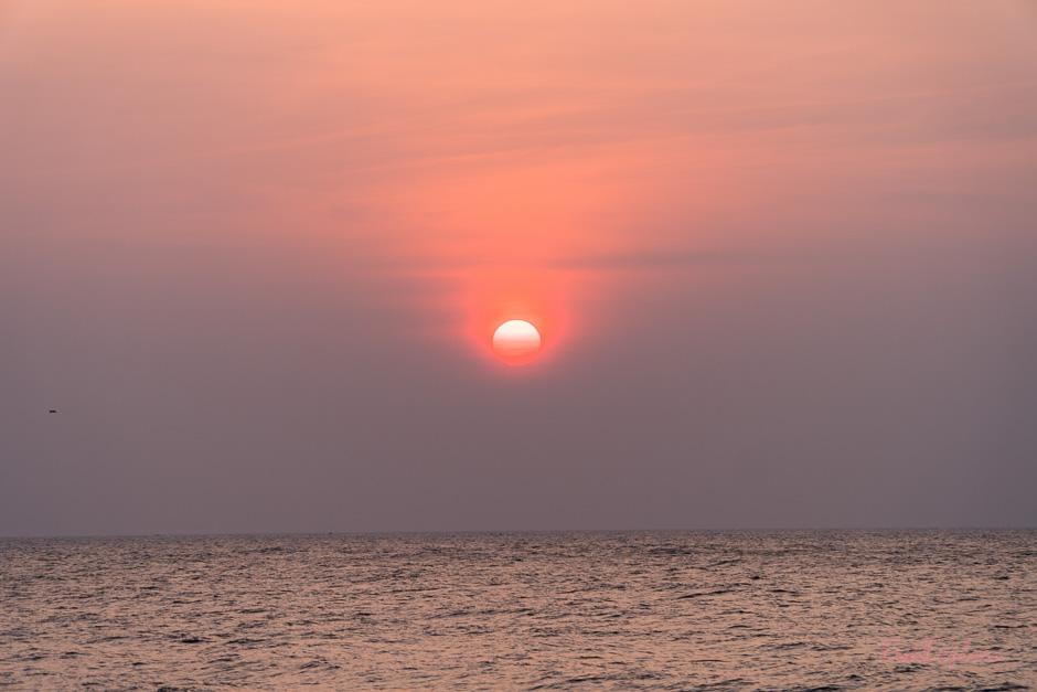 Urlaub in SriLanka