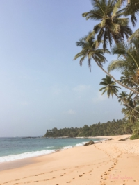 schoenster Strand Sri Lanka