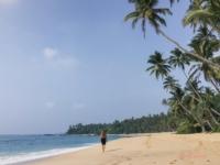 Backpacking Trip SriLanka