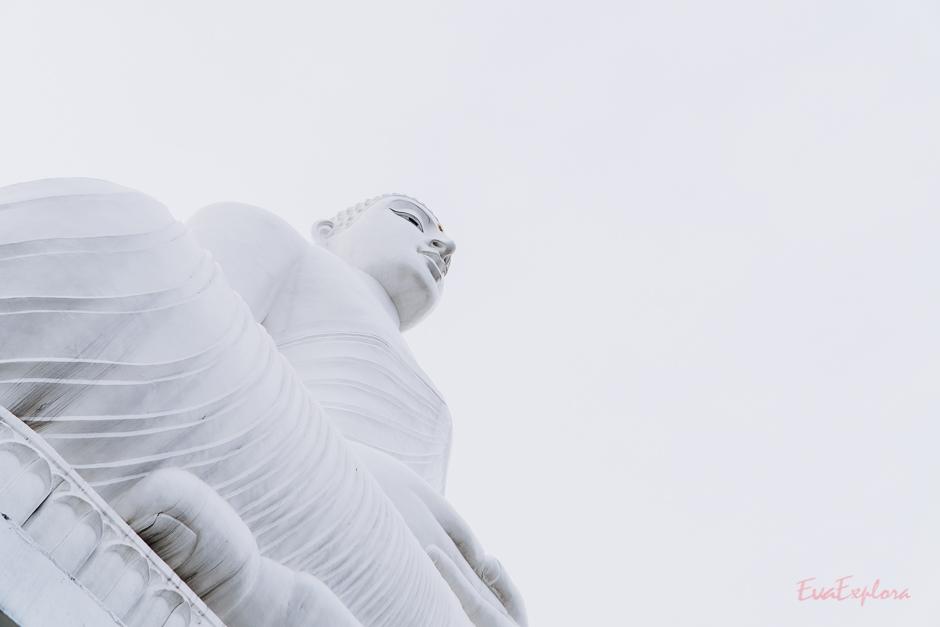White Buddha Kandy