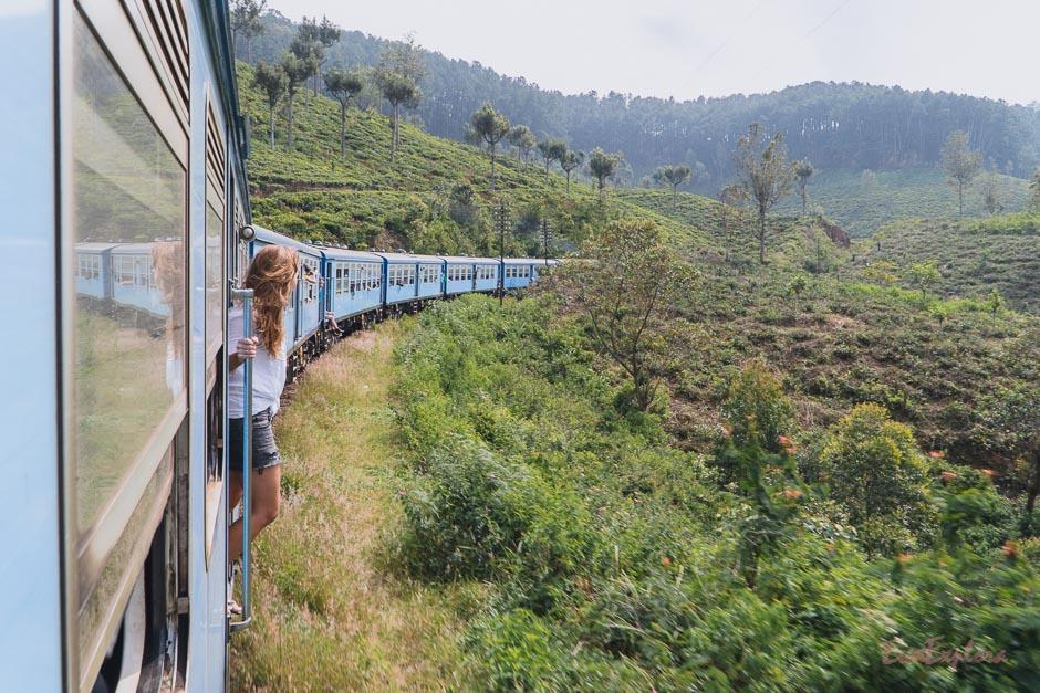 Ausblick aus dem Zug genießen