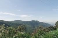 Ausblick auf Natur