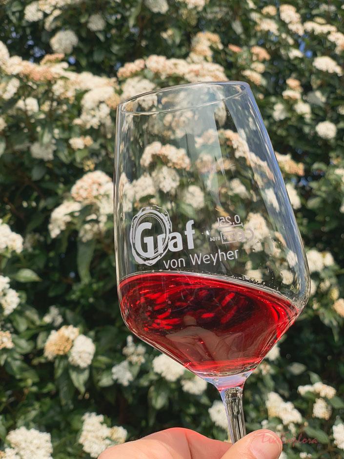 Weinprobe in Weyher