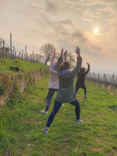 Yoga im Weinberg