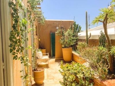Riad Dachterrasse Marrakesch
