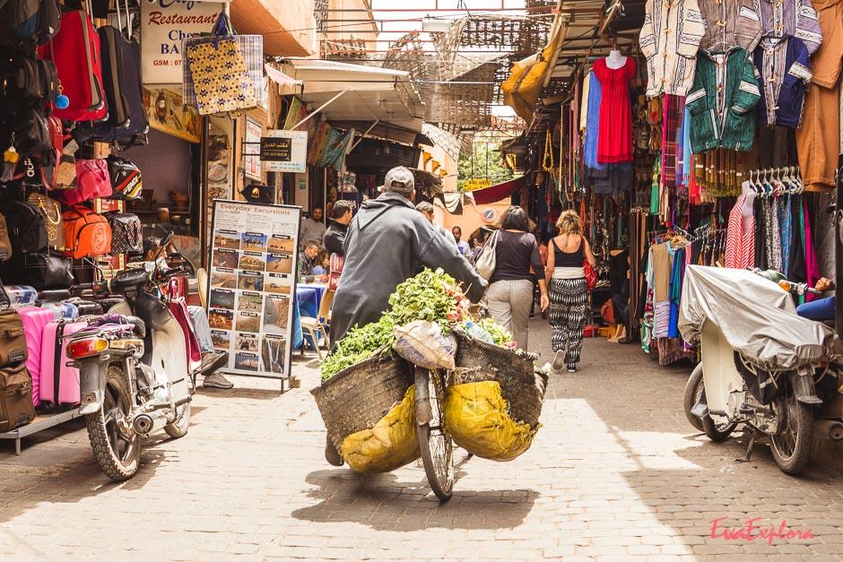 Marrakesch Impressionen