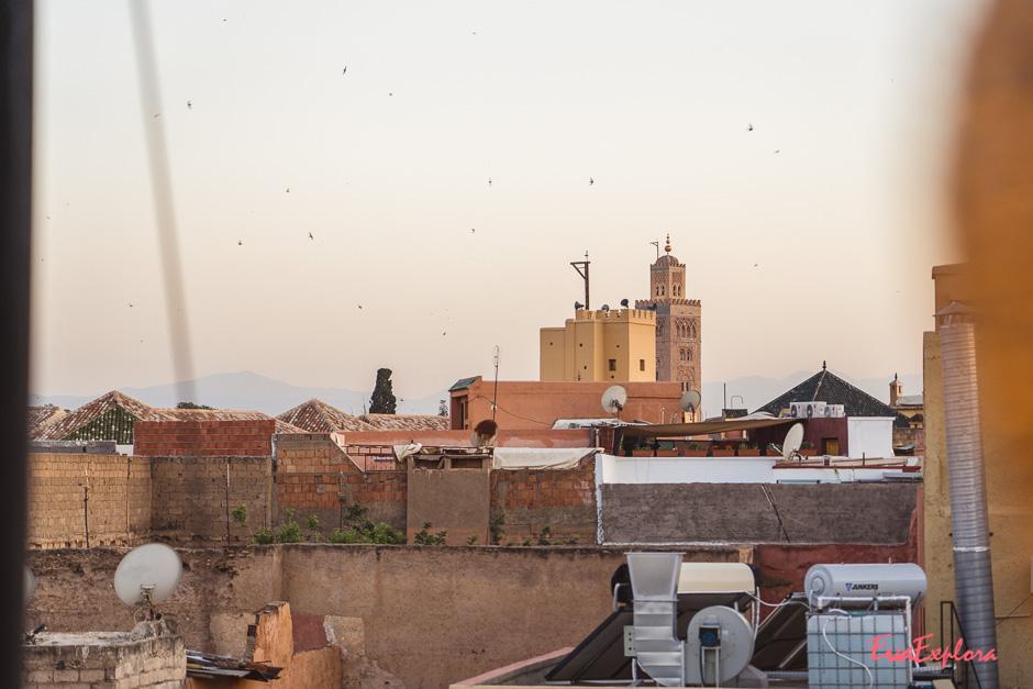 Abendstimmung Marrakesch