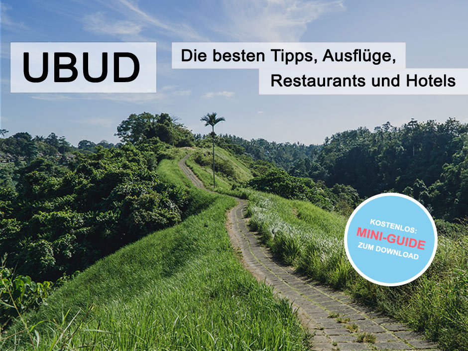 ubud artikel mit download