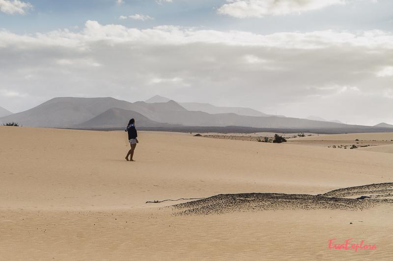 Dünen vor Corralejo
