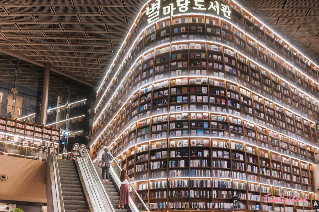 Lesetipps schoenste Bibliothek