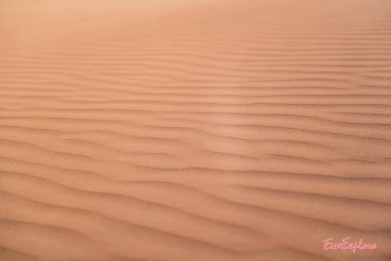 Sandstruktur Wueste