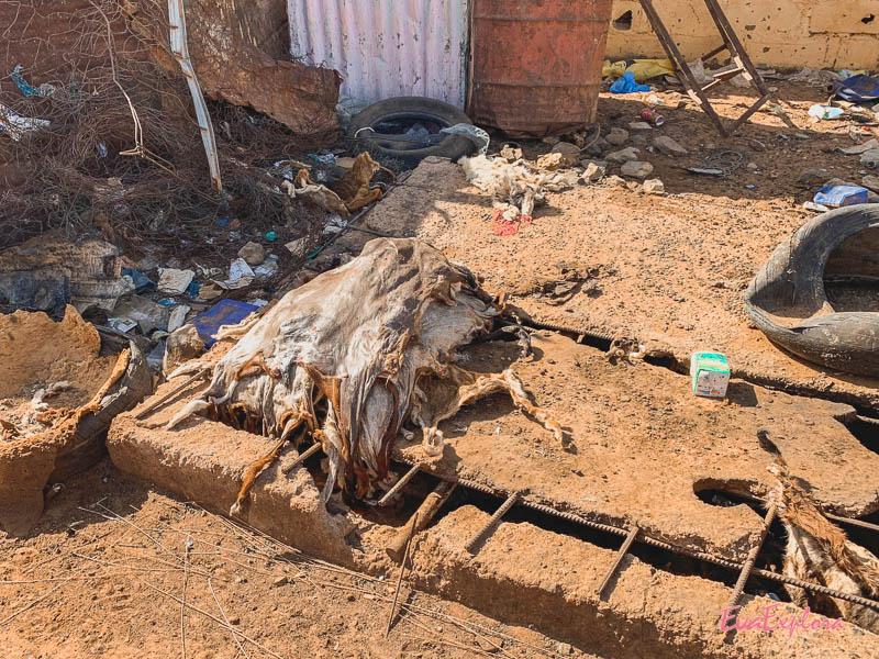 Eindruecke Mauretanien