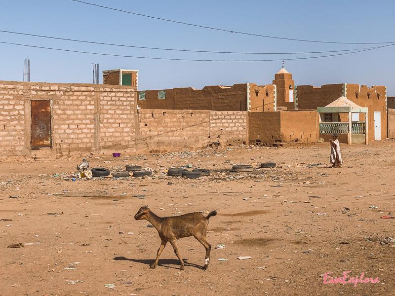Dorf in Sahara