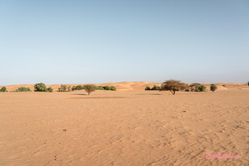 Landschaft in Mauretanien