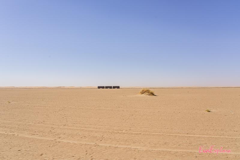 Eisenbahnwaggons in der Wüste