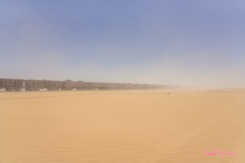 Wüstenzug