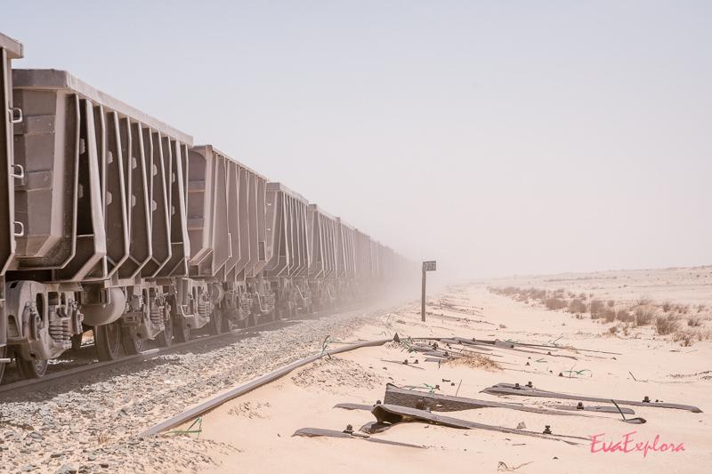 Wüstenzug Mauretanien