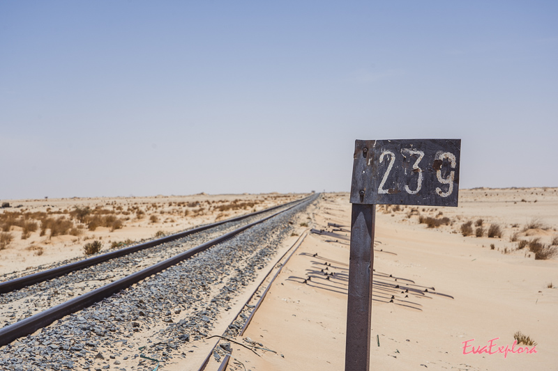 Zuggleise Wüste