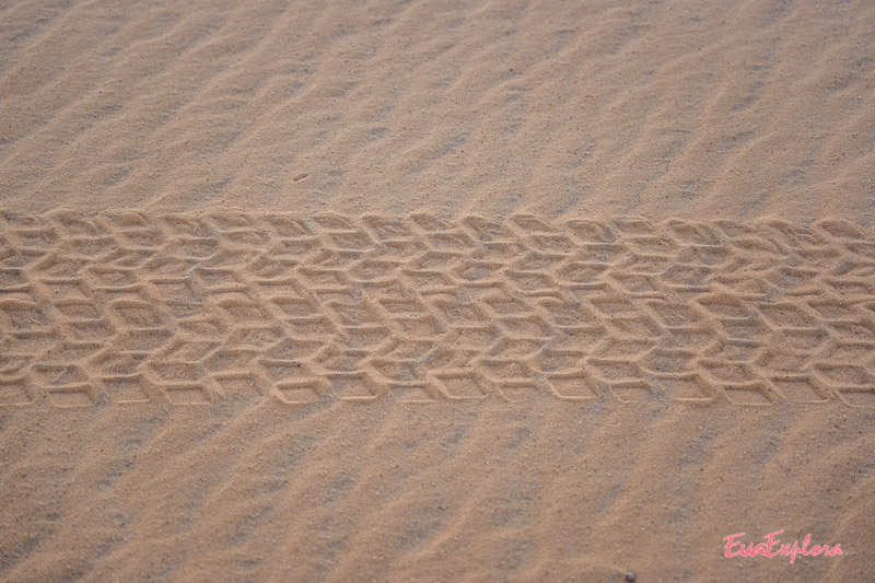 Reifenspuren Sahara