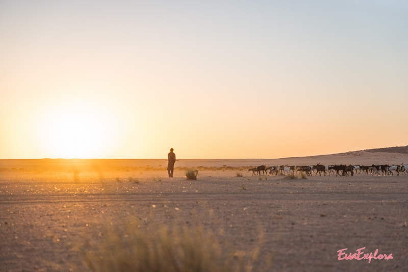 Sonnenuntergang Sahara Wüste